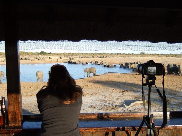 Foto's maken tijdens een safari in Afrika
