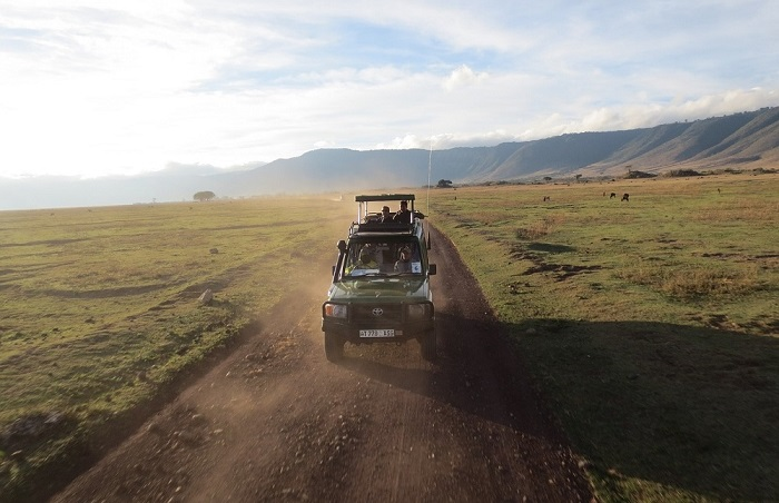 Met een jeep op safari in Afrika